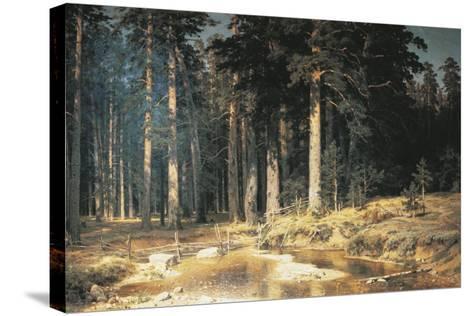 Forest, 1898-Ivan Ivanovitch Shishkin-Stretched Canvas Print