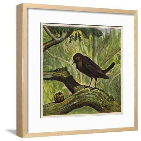 Blackbird and Snail-Ernest Henry Griset-Framed Art Print