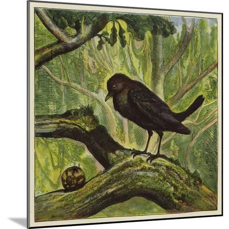 Blackbird and Snail-Ernest Henry Griset-Mounted Giclee Print