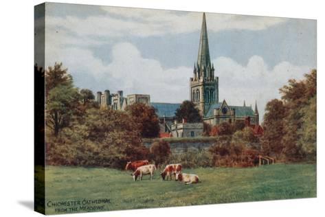 Chichester, Cathedral, from the Meadows-Alfred Robert Quinton-Stretched Canvas Print