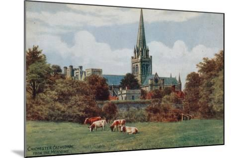 Chichester, Cathedral, from the Meadows-Alfred Robert Quinton-Mounted Giclee Print
