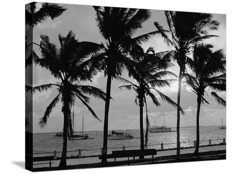 Sunset, Biscayne Bay, Miami, Florida, C.1910-20--Stretched Canvas Print