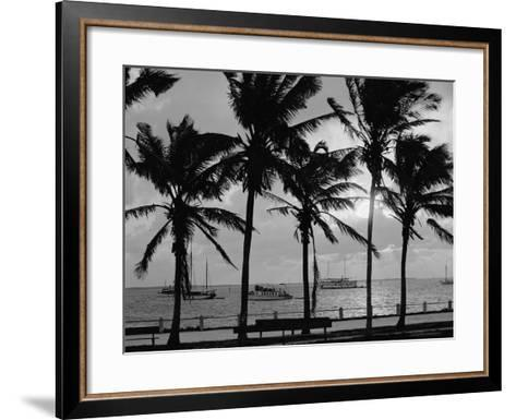Sunset, Biscayne Bay, Miami, Florida, C.1910-20--Framed Art Print