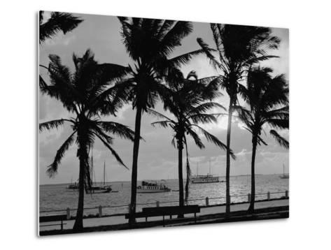 Sunset, Biscayne Bay, Miami, Florida, C.1910-20--Metal Print