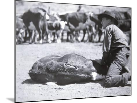 Cattle Brand of Ox Yoke Ranch, Montana--Mounted Photographic Print