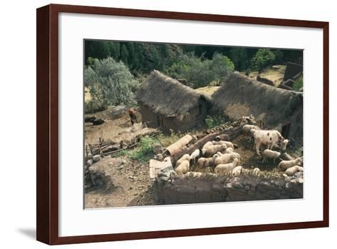 Huts and Livestock--Framed Art Print