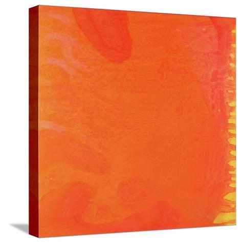 Rabbit Orange, 1997-Charlotte Johnstone-Stretched Canvas Print