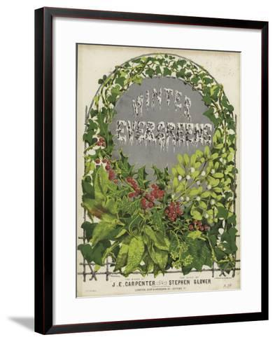 Cover of Winter Evergreens--Framed Art Print