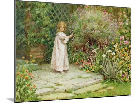 My Garden-William Ashburner-Mounted Giclee Print