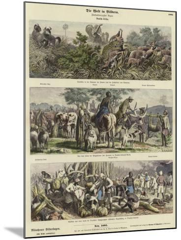 The World in Pictures: German Africa--Mounted Giclee Print