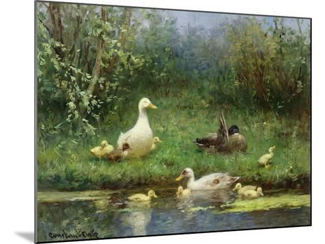 Ducks on a Riverbank-David Adolph Constant Artz-Mounted Giclee Print
