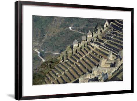 Terraces, Machu Picchu--Framed Art Print