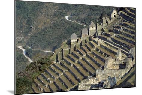 Terraces, Machu Picchu--Mounted Photographic Print