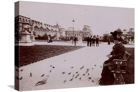 Woman Feeding Birds in the Jardin Des Tuileries--Stretched Canvas Print