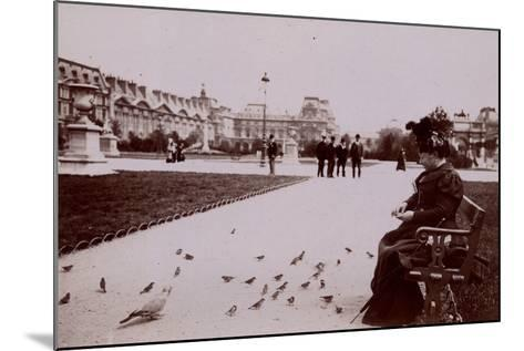 Woman Feeding Birds in the Jardin Des Tuileries--Mounted Photographic Print
