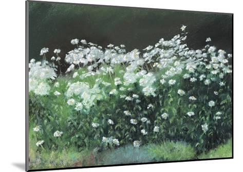 Shasta Daisies, 1992-Anthony Rule-Mounted Giclee Print
