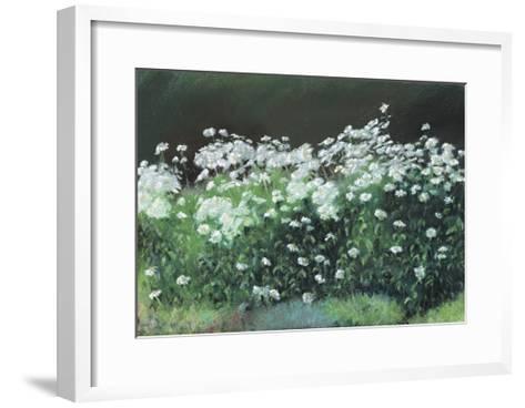 Shasta Daisies, 1992-Anthony Rule-Framed Art Print