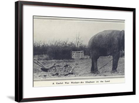 A Useful War Worker - an Elephant on the Land--Framed Art Print