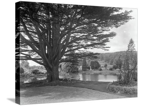 Gardens at Brinsop Court-Frederick Henry Evans-Stretched Canvas Print