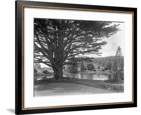 Gardens at Brinsop Court-Frederick Henry Evans-Framed Art Print