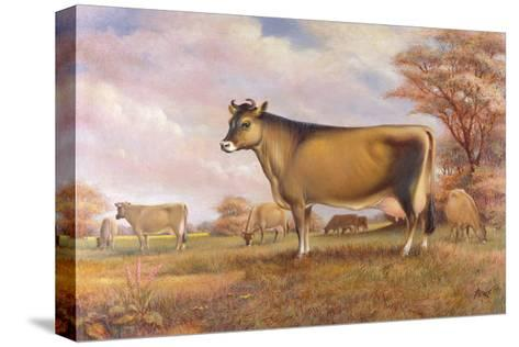Jersey Cow-Dudley Pout-Stretched Canvas Print