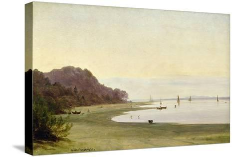 The Shore of the Elbe-Marcus Johann Haeselich-Stretched Canvas Print