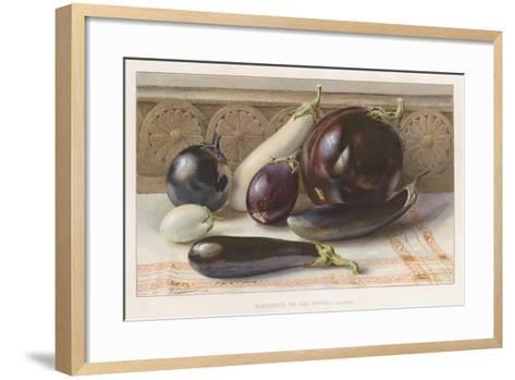 Aubergines or Egg Fruits--Framed Art Print