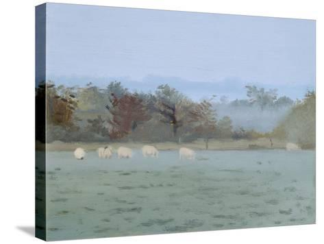 Sheep Grazing; Misty Morning, 1993-Gillian Furlong-Stretched Canvas Print