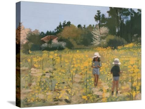 French Meadow, 1991-Gillian Furlong-Stretched Canvas Print
