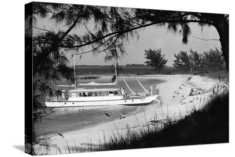 Cabbage Beach on Paradise Island, C.1955--Stretched Canvas Print