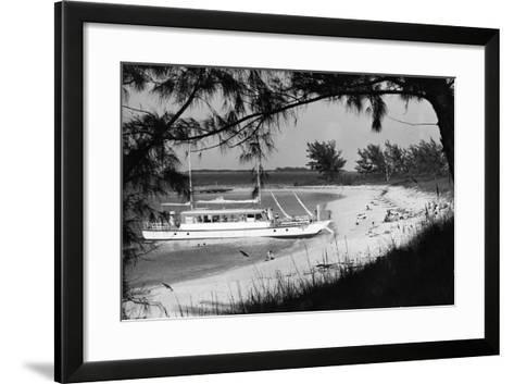 Cabbage Beach on Paradise Island, C.1955--Framed Art Print