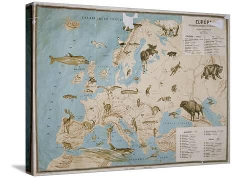 Map of Animals in Europe-Janos Balint-Stretched Canvas Print