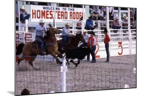 Homestead Rodeo, C.1985--Mounted Photographic Print
