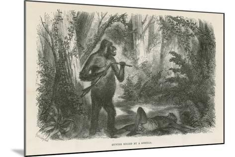 Hunter Killed by Gorilla--Mounted Giclee Print