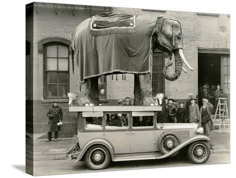 Model Elephant Atop a Vintage Motor--Stretched Canvas Print