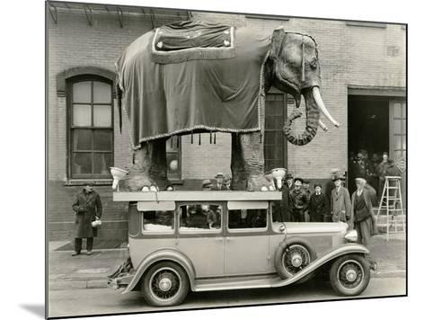 Model Elephant Atop a Vintage Motor--Mounted Photographic Print
