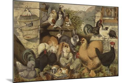 Boys' Pets--Mounted Giclee Print