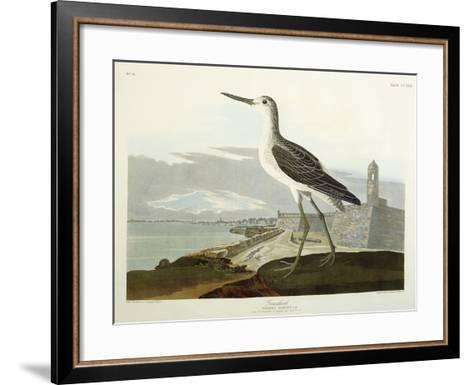 Greenshank, View of the St, 1835-John James Audubon-Framed Art Print