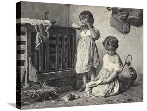 The Last Pet-Antonio Rotta-Stretched Canvas Print