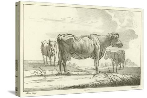 Three Cows-Aelbert Cuyp-Stretched Canvas Print