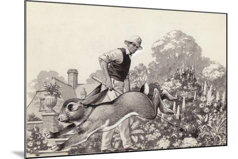 A Rabbit Runs around a Garden in a Cat Collar-Pat Nicolle-Mounted Giclee Print