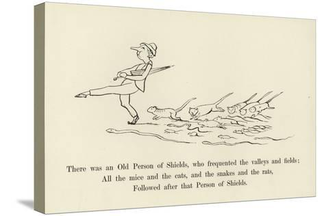 There Was an Old Person of Shields, Who Frequented the Valleys and Fields-Edward Lear-Stretched Canvas Print