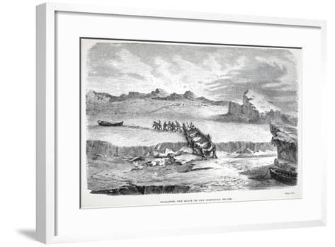 Dragging the Boats to the Illuidlek Island, Pub. London 1886--Framed Art Print