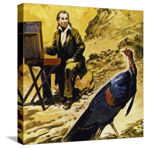 Audubon Devoted His Life to Painting the Birds of America--Stretched Canvas Print