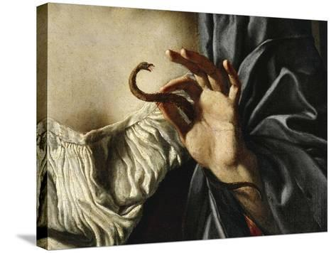 Asp, Detail from Death of Cleopatra, 1675-Francesco Cozza-Stretched Canvas Print