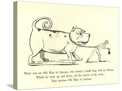 There Was an Old Man of Ancona, Who Found a Small Dog with No Owner-Edward Lear-Stretched Canvas Print