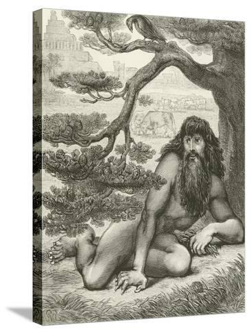 Nebuchadnezzar Dwelling with the Beasts of the Field--Stretched Canvas Print