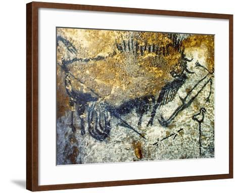 A Wounded Bison Attacking a Man, C.15,000-10,000 Bc--Framed Art Print