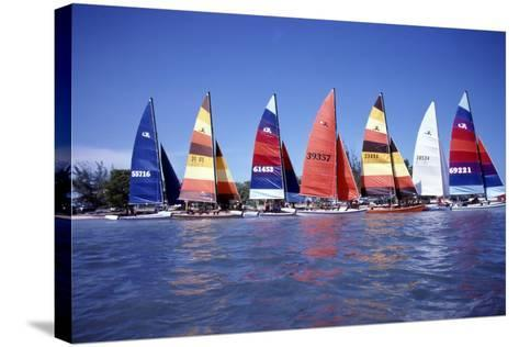 Hobie Cats Anchored and Lined Up Along the Shore, C.1990--Stretched Canvas Print