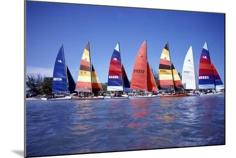 Hobie Cats Anchored and Lined Up Along the Shore, C.1990--Mounted Photographic Print